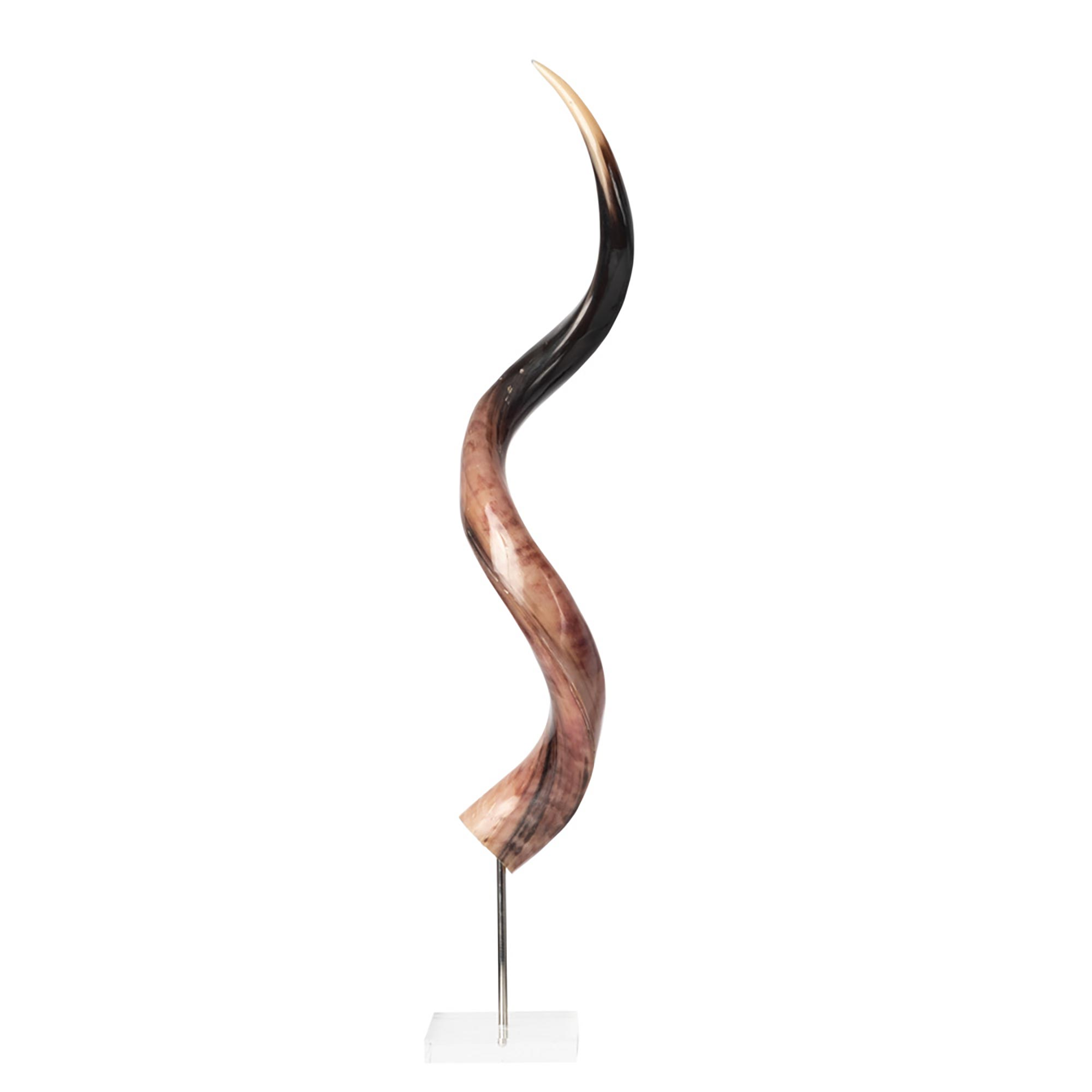 Mounted Polished Kudu Horn